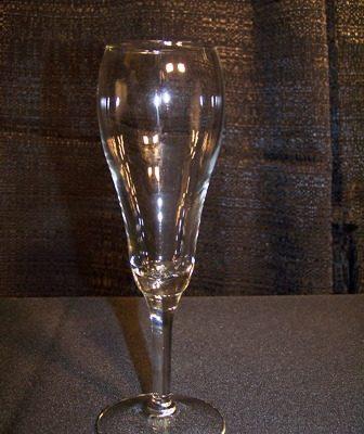 tulip champagne 3531